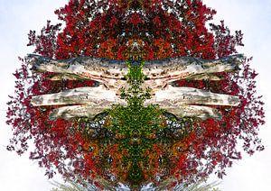 Rood gekleurde boom kunstwerk van