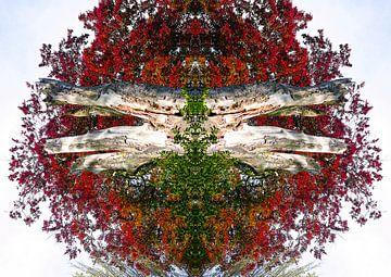 Rood gekleurde boom kunstwerk van Devin Meijer