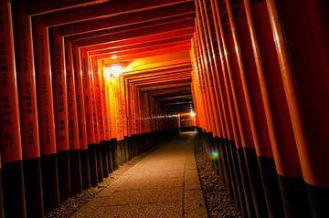 Torii-Tore - Fushimi Inari bei Nacht von Michael Bollen