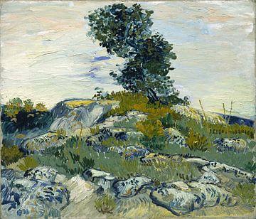 Felsen mit Baum, 1888 - Vincent van Gogh