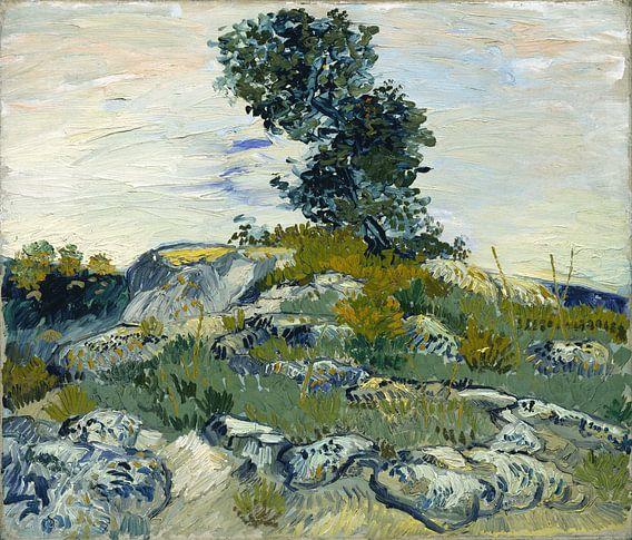 Vincent van Gogh. Rotsen,  1888 van 1000 Schilderijen