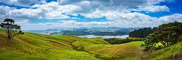 Panorama der hügeligen Landschaft, Neuseeland von Rietje Bulthuis