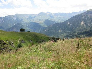 Berglandschap Franse Alpen , groen rustgevend von Sander van der Lem
