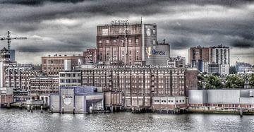 Meel fabriek Rotterdam. van Mariska Brouwenstijn