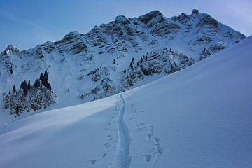 Spoor in de sneeuw van Tjaard Heikens