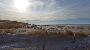 At the beach.  van Il se