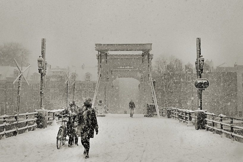 Magere brug in de sneeuw van Frank de Ridder