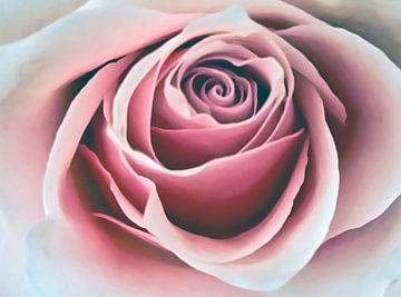 Fluwelen roze roos van Gonnie van Hove