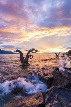 Fontaine hippocampe à Vevey sur le lac Léman sur Werner Dieterich