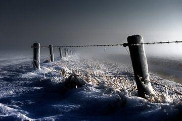 Freezing........ von Wim Schuurmans
