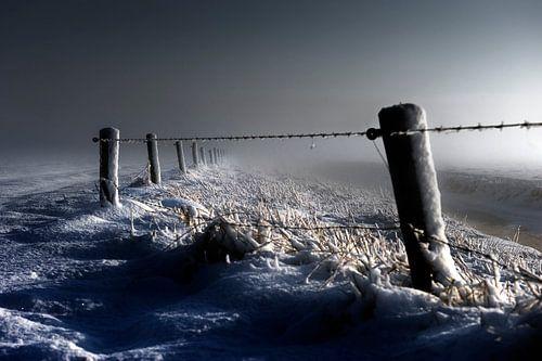 Freezing........
