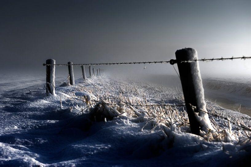 Freezing........ van Wim Schuurmans