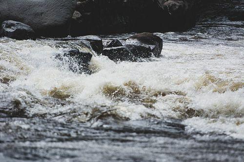 Rio Magdalena stroomversnelling von Ronne Vinkx