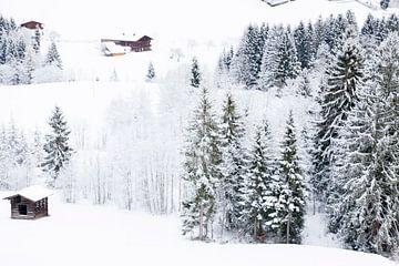 Winterwonderland von Daisy Gilyamse