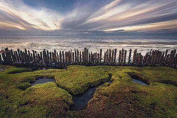 Waddenzee Moddergat van Peter Poppe