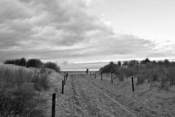 Zandduin aan de Oostzee in Warnemünde van Silva Wischeropp