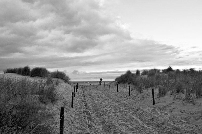 Sanddüne an der Ostsee in Warnemünde von Silva Wischeropp