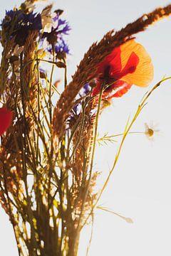 Bloemen van Melanie Schat