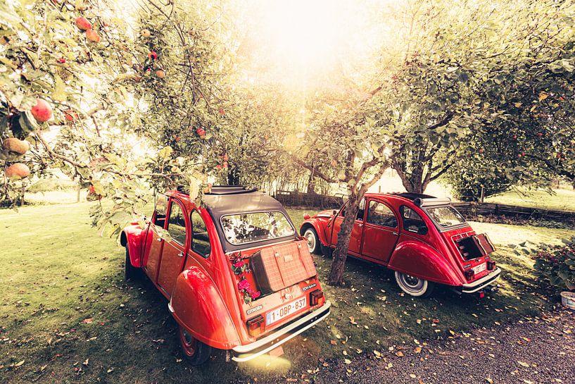 Twee Citroën 2CV  rusten uit in een appel boomgaard op een mooie zomerdag in België van Bas Meelker