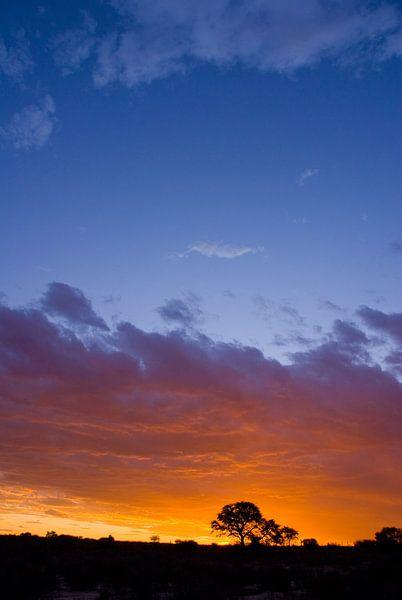 Sunset van Studio voor Beeld