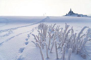 Weisse Schlangen im Schnee von Tom Voelz