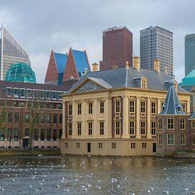 Binnenhof en Hofvijver, Den Haag, politiek centrum Nederland van Peter Apers