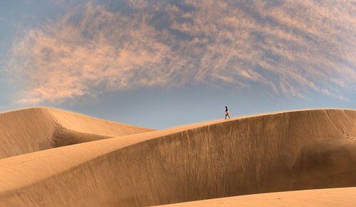 0276 Walking on the dune