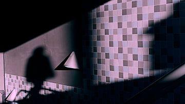 Schaduwspel van Marc Pennartz