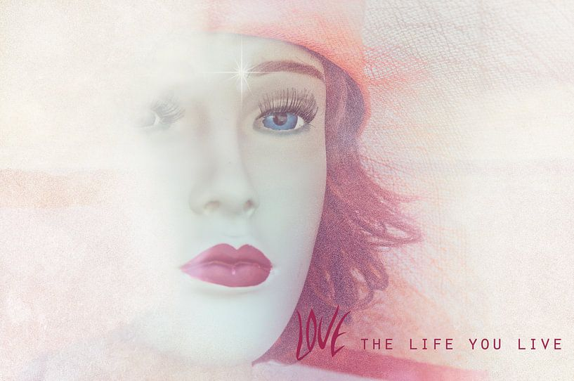Leef je droom... van Ellen Driesse