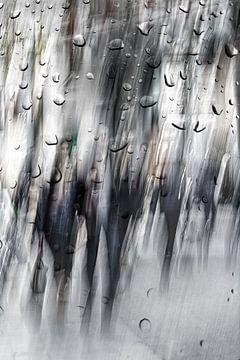 Straatfotografie in Antwerpen na de regen sur
