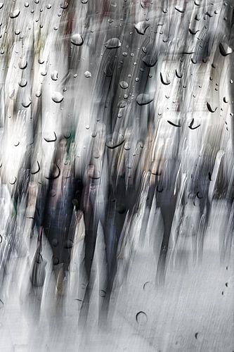 Straatfotografie in Antwerpen na de regen van