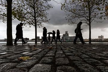Rotterdam Kop van Zuid  van Silvia Thiel
