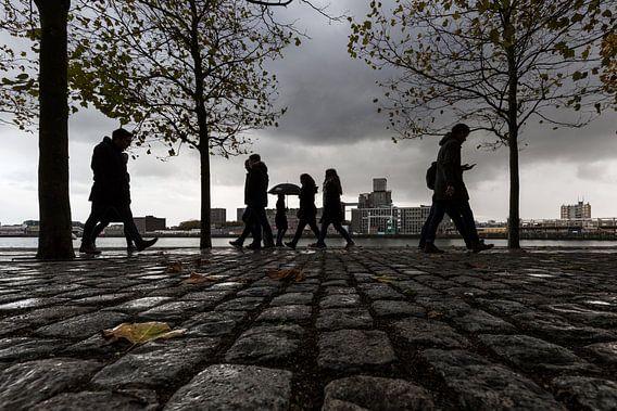 Rotterdam Kop van Zuid  von Silvia Thiel