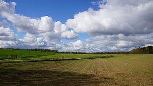 Zeddam -- Montferland van