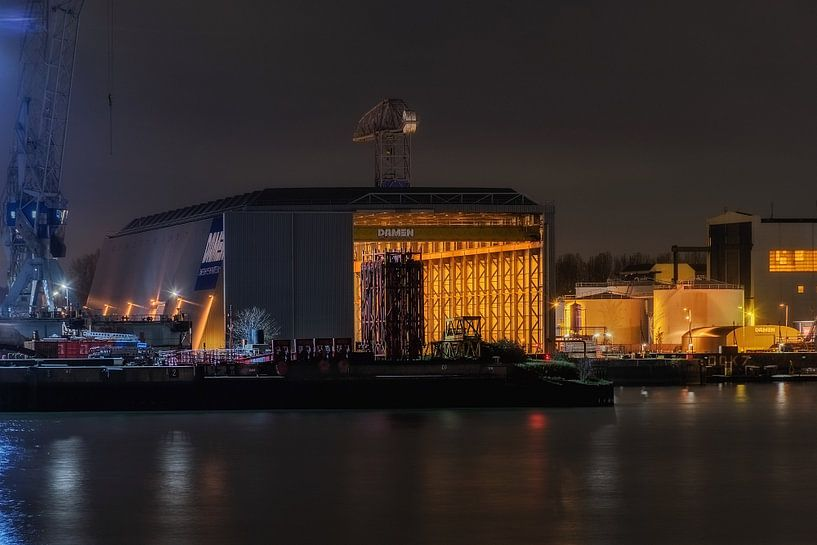 Damen Shiprepair Rotterdam van Nico Dam