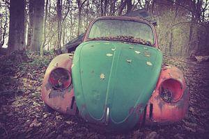 Vervallen auto in het bos van Tamara de Koning