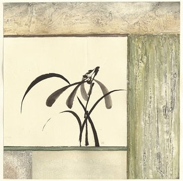 Essenz der Orchideen, Chris Paschke von Wild Apple