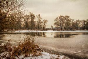 Eijsder Beemden in de winter