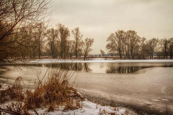 Eijsder Beemden in de winter van John Kreukniet