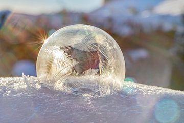 Frozen bubble 2021 soft van Stefanie van Dijk