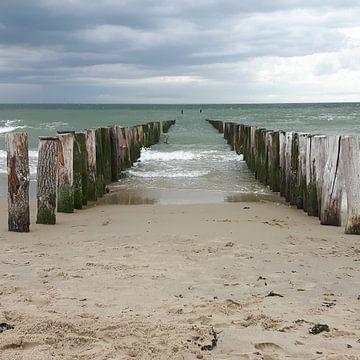 Zeeuwse kust van Paula de Wit
