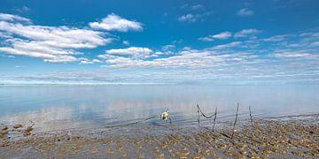 Ein ruhiges Wattenmeer in der Nähe des Hafens von Lauwersoog von Harrie Muis