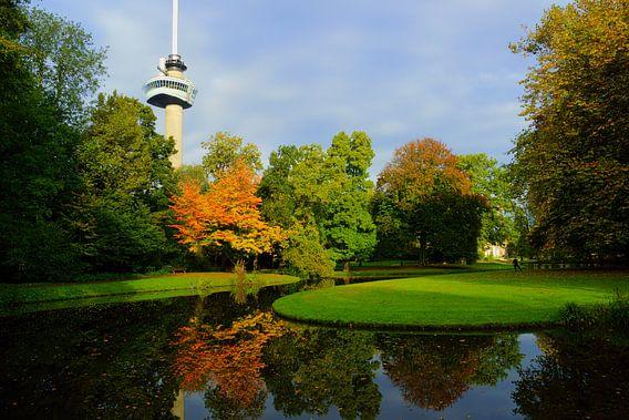 Herfst in Het Park in Rotterdam van Michel van Kooten