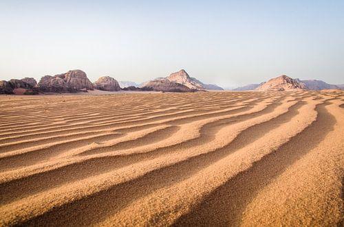 Goude uurtje in de Wadi Rum Woestijn in Jordanië