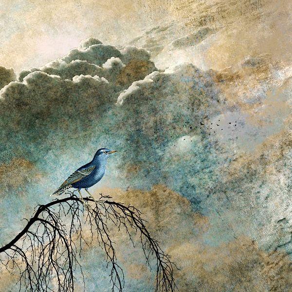 HEAVENLY BIRD IIa von Pia Schneider