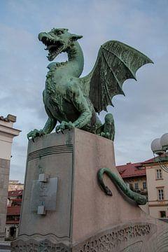 Drache auf der Drachenbrücke in Zentral-Lubliana, Slowenien von Joost Adriaanse
