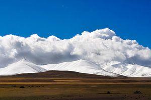 Beautiful Tibet  van Dennis Timmer