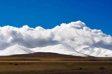 Beautiful Tibet  von Dennis Timmer