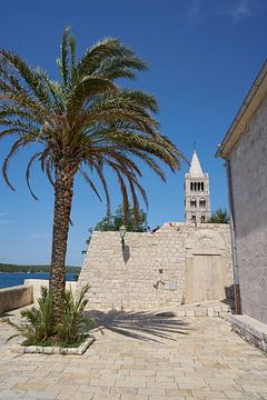 Point de vue près de l'église de l'Assomption de Sainte Marie dans la vieille ville de Rab.