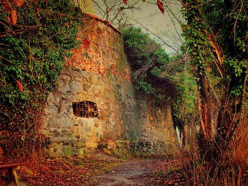 Wasserburg am Inn 09 von